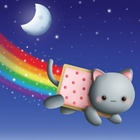 Lucy Fernandez's avatar image