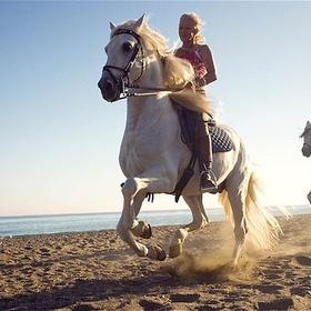 Learn to horse ride - Bucket List Ideas