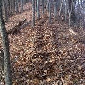Autumn - Walk Knee-Deep In Leaves - Bucket List Ideas