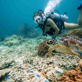 Snorkel with sea turtles - Bucket List Ideas