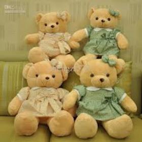 Win a teddybear at the fair - Bucket List Ideas