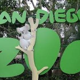 Visit the San Diego Zoo - Bucket List Ideas