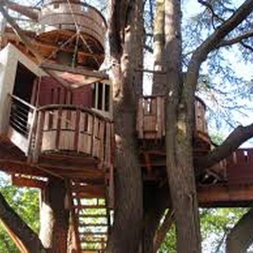 Build a tree house - Bucket List Ideas