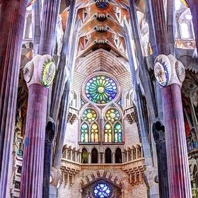 Look up in la Sagrada Familia Barcelona - Bucket List Ideas