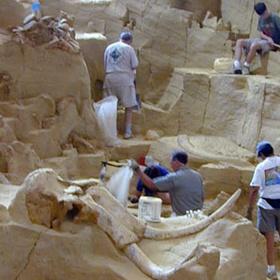 Help at an Archaeological or Fossil Dig - Bucket List Ideas