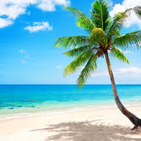 "Go to all the places listed in the Beach Boys song ""Kokomo"" - Bucket List Ideas"