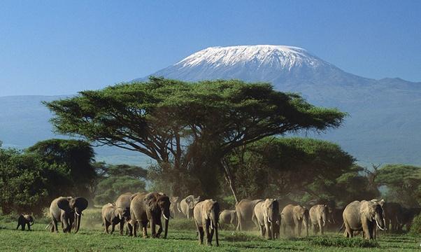 Hike Mount Kilimanjaro - Bucket List Ideas