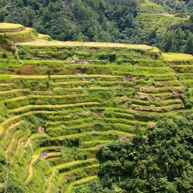Visit Banaue Rice Terraces, Philippines - Bucket List Ideas
