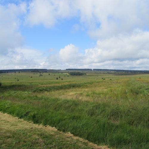 Visit Hoge Venen Natural Park, Belgium - Bucket List Ideas