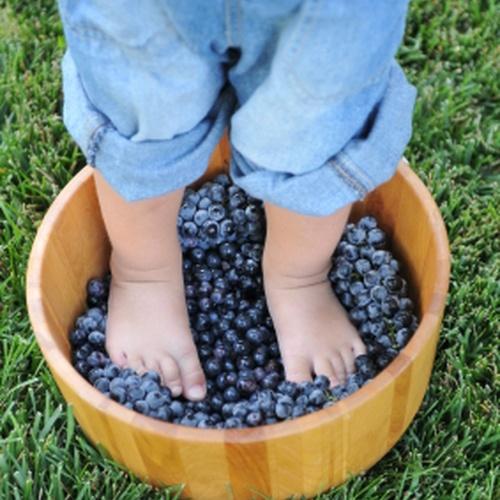 Go grape stomping - Bucket List Ideas