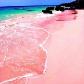 Go to a Pink Sand Beach - Bucket List Ideas