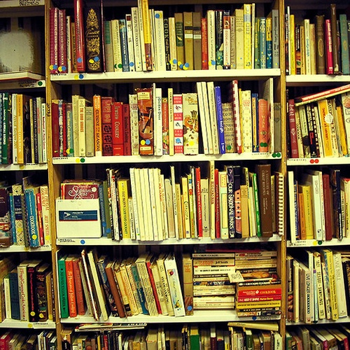 Read 1,000+ Books - Bucket List Ideas