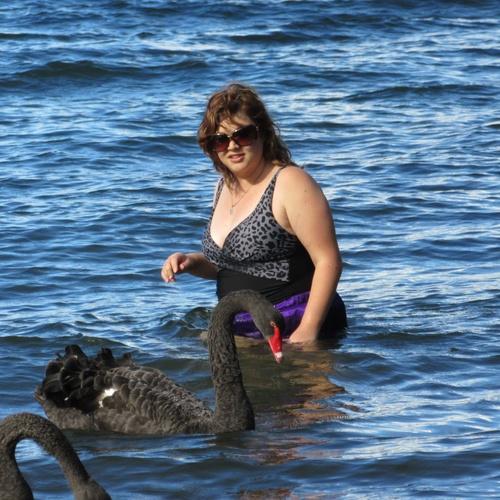 Swim with swans - Bucket List Ideas