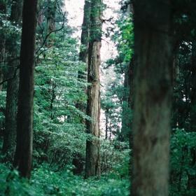 Go on a long nature hike - Bucket List Ideas