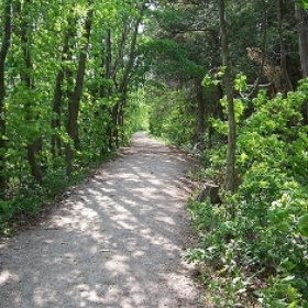 Hike every trail at a state park - Bucket List Ideas