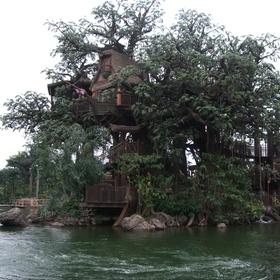 Build a tree house! - Bucket List Ideas