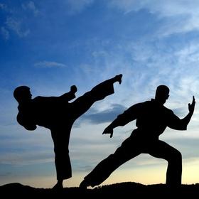 Learn a martial art - Bucket List Ideas