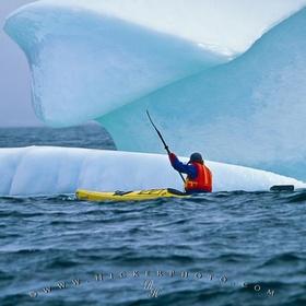 Go sea kayaking in Newfoundland - Bucket List Ideas