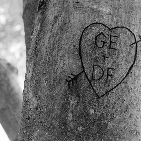 Engrave My Name on a Tree Trunk - Bucket List Ideas