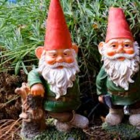 Own a Garden Gnome - Bucket List Ideas