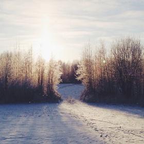 Go to Finland on winter - Bucket List Ideas