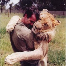 Hug a Lion - Bucket List Ideas