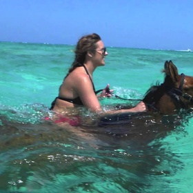 🐎 Go Beach Horseback Riding and Swimming with Horses - Bucket List Ideas