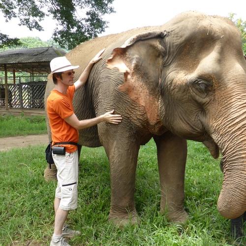 Hug an elephant - Bucket List Ideas
