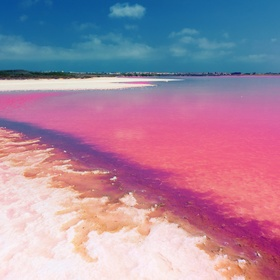 See The Pink Lake of Torrevieja, Spain - Bucket List Ideas