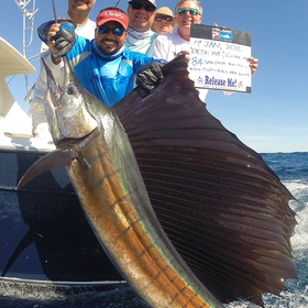 Reel in a Sailfish - Bucket List Ideas