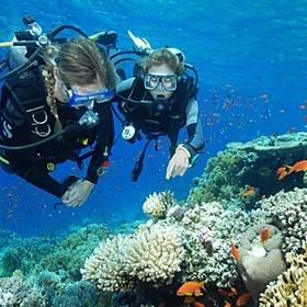 Scuba Diving - Go @ least once - Bucket List Ideas