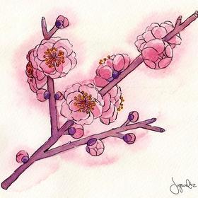 30 Floral drawings - Bucket List Ideas