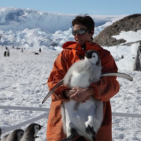 Hug a Penguin - Bucket List Ideas